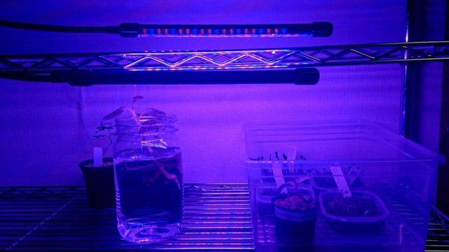 植物育成ライトLED